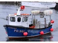 Consort pd901