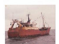 Polarfisk CY 226