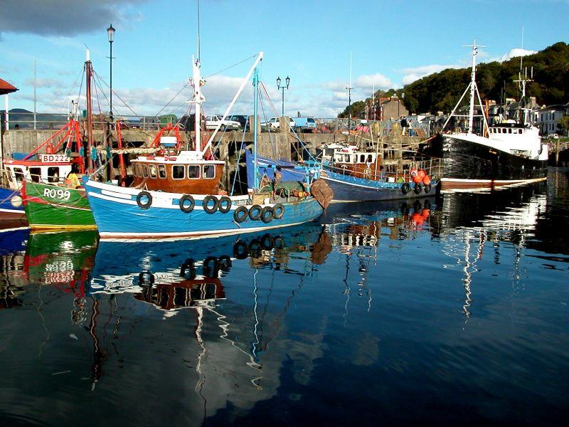 Rothesay Boats 2