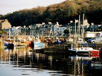 Rothesay Boats2