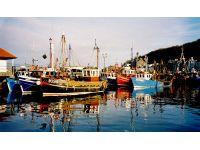 Rothesay Boats