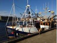 Campbeltown sept 2013