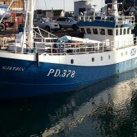 sustain pd 378