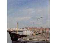 SCH106 Noordzee 150kB