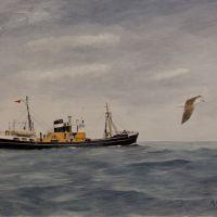 H119 Cape Adair