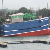 Ptarmigan TN1