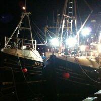 Tarbert harbour last week