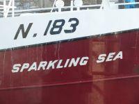 Sparkling Sea N.183